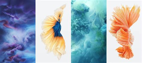 iphone 6s official live photos dynamic wallpapers