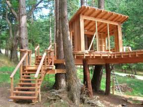 designed for outdoors awesome designed outdoor tree house created using