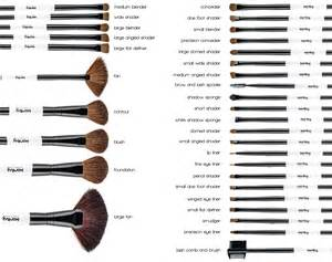 setter define makeup brush set uses www imgkid com the image kid has it