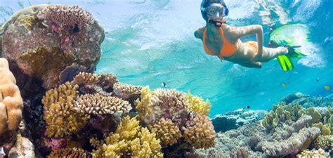 best glass bottom boat tour key west key west glass bottom boat tour the ocean vue adventure