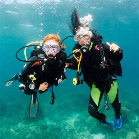 dive holidays family diving holidays dive worldwide