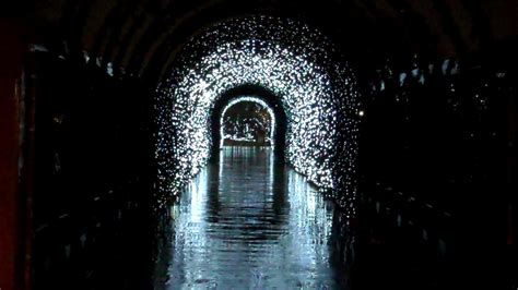 festival of lights cincinnati zoo 2017 reflecting light tunnel cincinnati zoo festival of