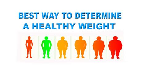 your ideal weight according to your height all healthy news calculate bmi determine your healthy weight according to