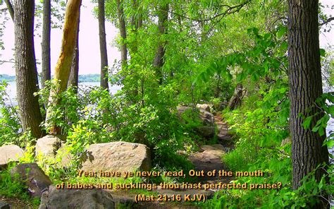 Garden Of In The Bible Large Size Bible Versed Scenic Nature Wallpapers