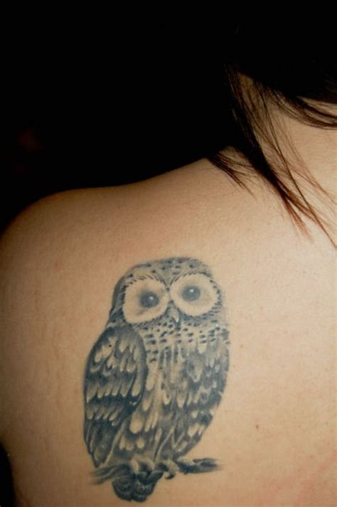 owl tattoo location 17 best images about cute tattoos on pinterest animal
