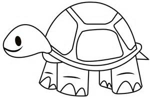 Desert Tortoise Coloring Outline Sketch Page sketch template