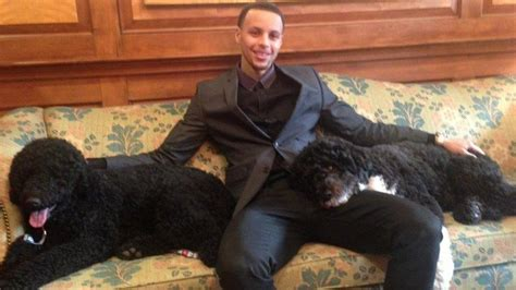 white house dog stephen curry visits the white house hangs out with obama family dogs