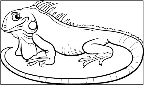 imagenes para pintar iguana dibujos de reptiles animales vertebrados dibujos y