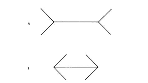 ilusiones opticas las mejores las mejores ilusiones 243 pticas elcorreo com