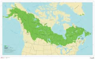 boreal forest canada map todays disastrous climate and energy policies what not