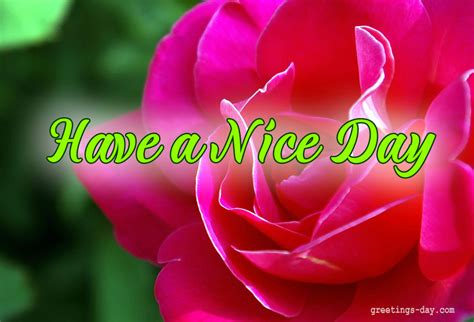 nice day cards pictures holidays