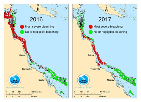 coral bleaching diagram great barrier reef devastated by severe coral bleaching