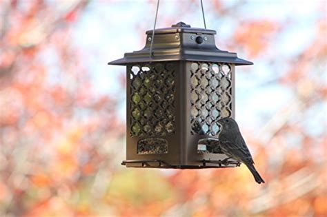 more birds 105in copper finish metal hopper bird feeder