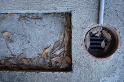 Pav Plumbing by Four Objects Plumbers Find In Blocked Drains
