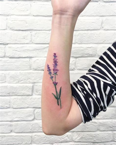 lavendar tattoo gorgeous lavender tattoos