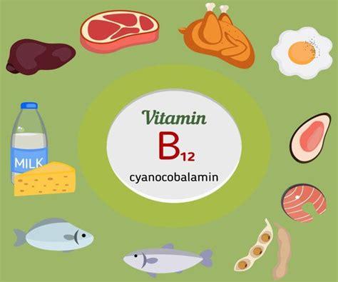 alimentos que contienen vitaminas b12 alimentos ricos en vitaminas alimentosricosen info