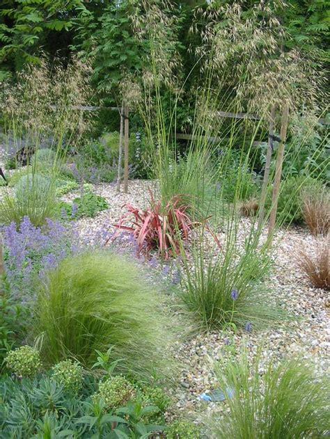 Backyard Pebble Gravel by Best 25 Pebble Garden Ideas On Garden Ideas