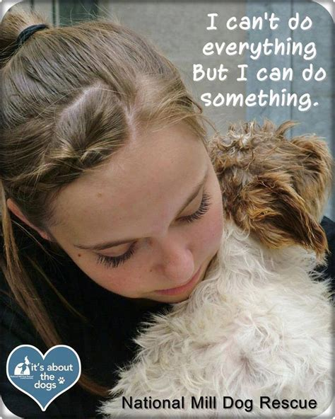 images  nmdr dog quotes  pinterest