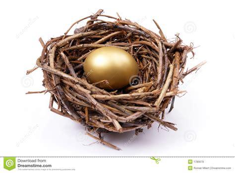 golden egg  nest stock image image  business bird