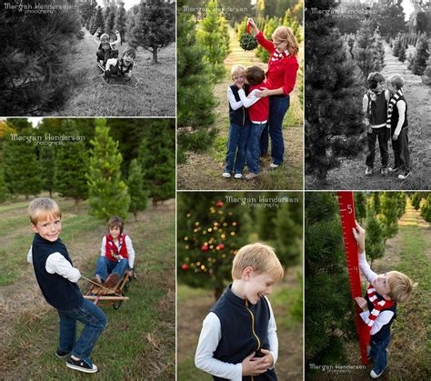 jordan lake christmas tree farm morgan henderson photography