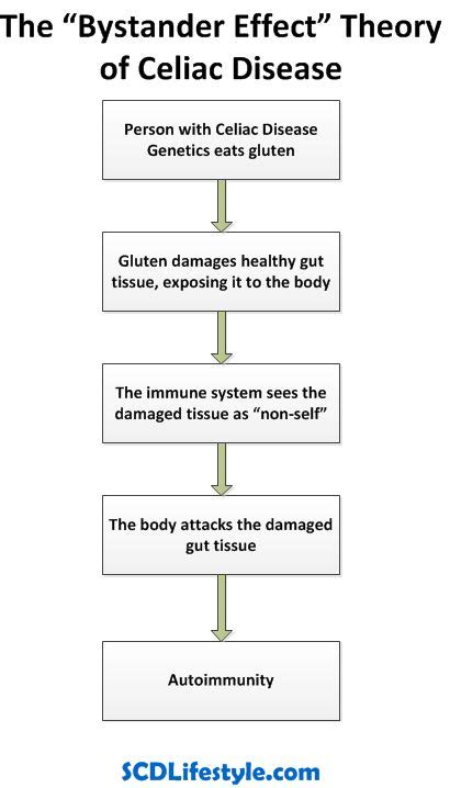 research design bystander effect 17 best images about celiac on pinterest high risk what