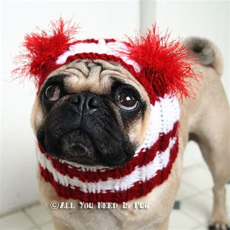 original pugs hat hat the original pug hat by jessicalynneart 24 00 pugs in hats