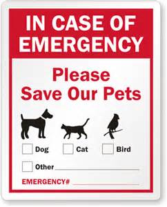 in of emergency glass template in of emergency label pets safety window decal with