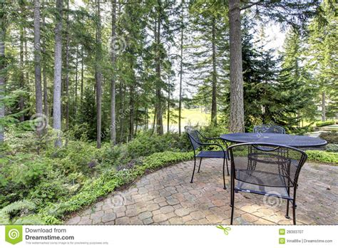 Backyard With Pine Trees And Metal Table With Chairs