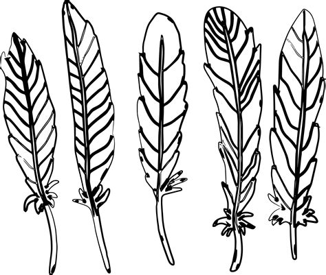 feather coloring page new aztec feather coloring page wecoloringpage