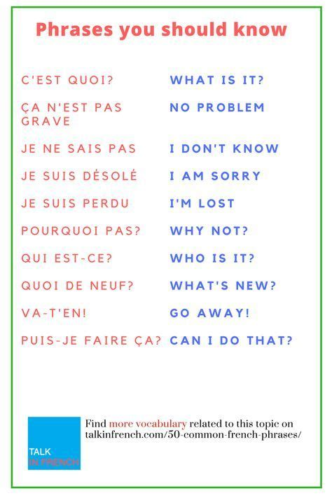 using french vocabulary 0521578515 20 best the bear comics images on