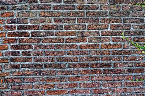 Imagen de Fondo pared Ladrillo   Foto Gratis