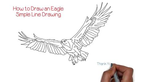 how to draw doodle lines how to draw an eagle simple line drawing yzarts yzarts