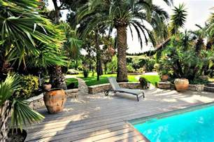 Back Yard Kitchen Ideas the best trees for pool landscaping