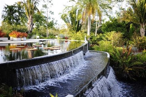 Sanibel Island Botanical Garden 399 Best Images About Fort Myers Cape Coral And The Islands Fl On Pinterest Henry Ford