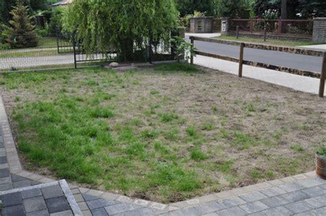 Schöner Rasen Ohne Unkraut 2066 by Rasen Ohne Unkraut Ber Ideen Zu Unkraut Im Rasen Auf