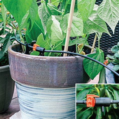 container garden kit drip irrigation kit for container plants