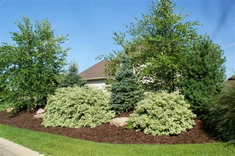 pin landscaping a berm submited images pic 2 fly on pinterest