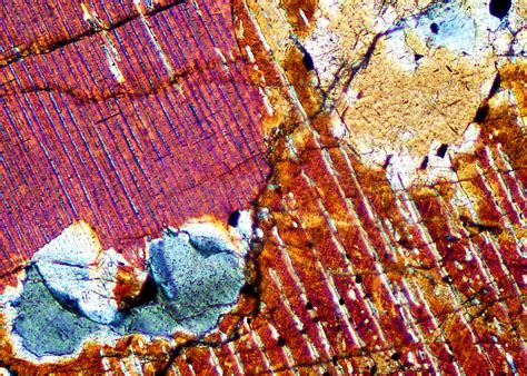 orthopyroxene in thin section skaergaard photomicrographs