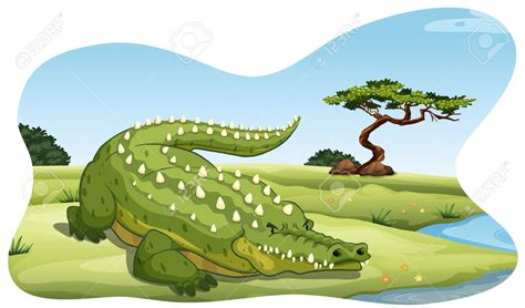 crocodile clipart crocodile clipart river pencil and in color crocodile