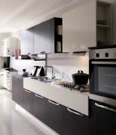 Modern Black Kitchen Cabinets Modern Kitchen Cabinets Design Features 187 Inoutinterior