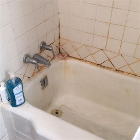 mold in bathroom health symptoms 1000 ideas about bathroom mold on mold in
