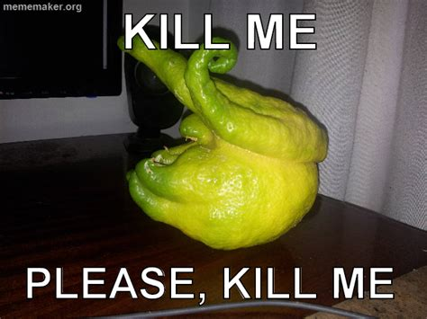 Lemon Memes - pear lemon lime kill me know your meme