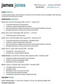 how does a professional resume look sles of resumes