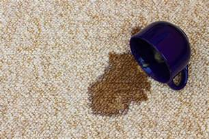 Coffee Stain On Carpet Remove Coffee Stains And Pet Stains From Your Carpet