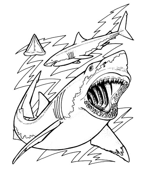 free printable shark coloring pages for