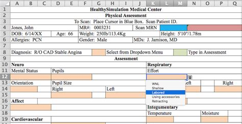 Ehr Needs Assessment Template Ehr Physical Assessment Document For Simulation Includes Excel Template Healthy Simulation