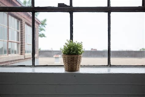 lavare pavimenti l ammoniaca 232 sicura per lavare vetri e pavimenti