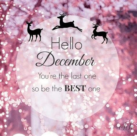 hello december pictures photos and images for