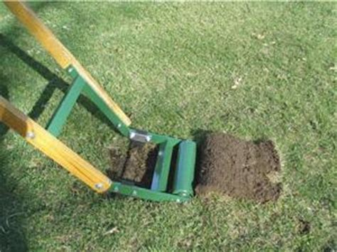 Grass Removal by Want To Remove A Lawn Here S How Mercury News