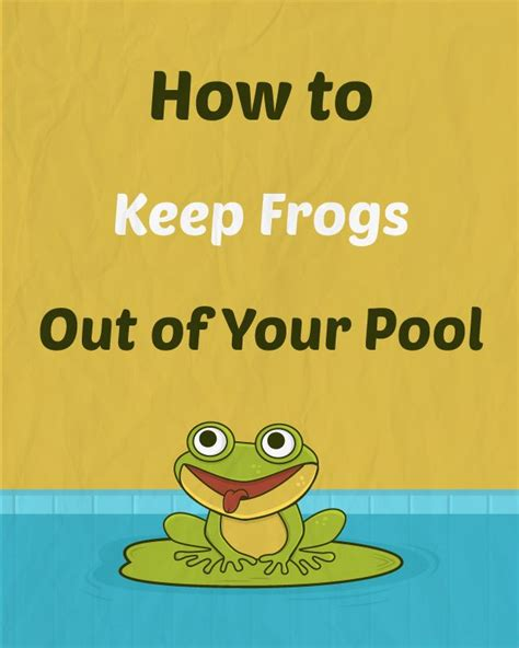 How To Find A Frog In Your Backyard by 287 Best Images About Swimming Pools On Above